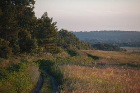 Country landscape. Dirt road. Lizenzfreie Bilder