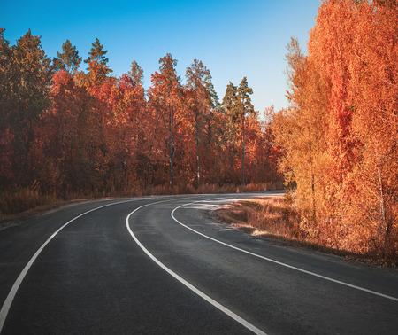 Landstraße im Herbst Standard-Bild - 91697748