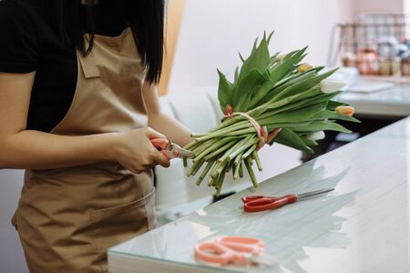 florist girl trims the tips of white tulips in a flower shop