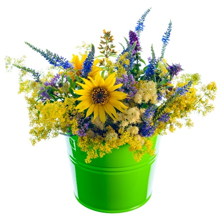 Bucket with wildflowers  on pure white. photo
