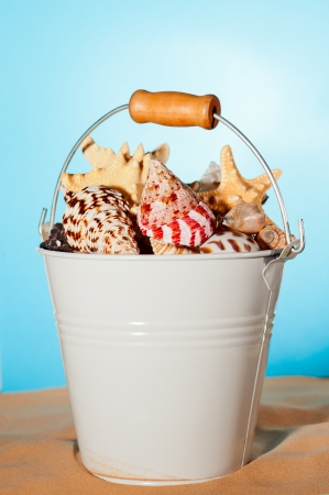 Beach bucket with seashells on sand over blue background. Banco de Imagens