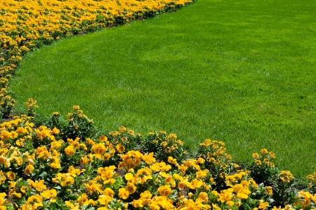 Curve of yellow flowerbed and lawn  photo