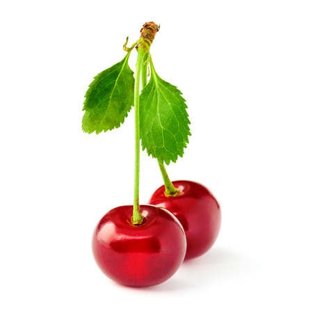 satined: Two yummy cherries on stem isolated on white.