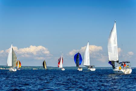 Regatta on the sea.