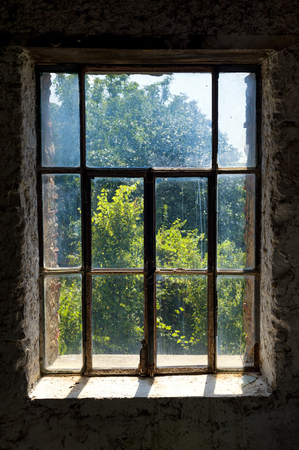 dirty room: Abandoned  dark room with a dirty window overlook the garden.