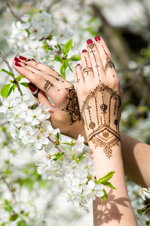 manicured hands: Red manicured hands with Mehndi in spring cherry blossom, Indian tradition. Vertical composition.