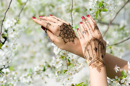 Red manicured hands with Mehndi in spring cherry blossom, Indian tradition.