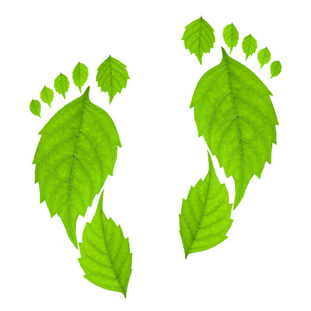 huellas pies: Huella de hojas aisladas sobre un fondo blanco. Concepto de Eco.