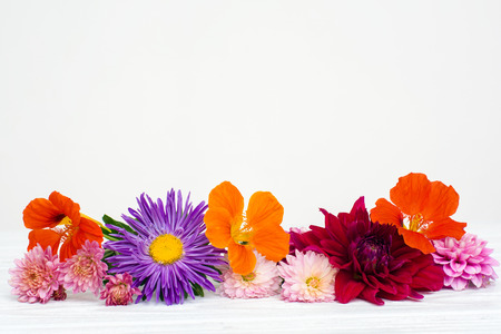 plank: Fresh autumn flowers on white painted wooden planks. Selective focus. Place for text.