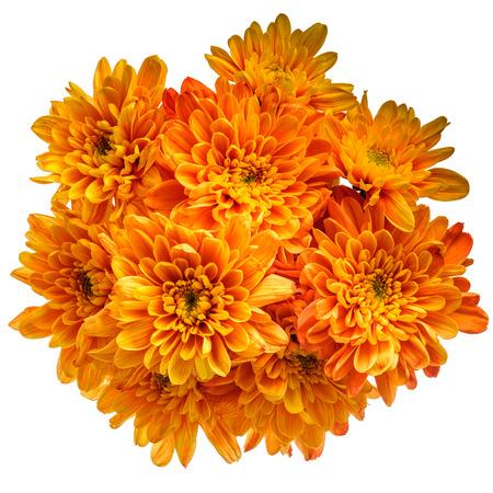 ramo de flores: Ramo de crisantemos de color naranja aislados sobre fondo blanco puro.