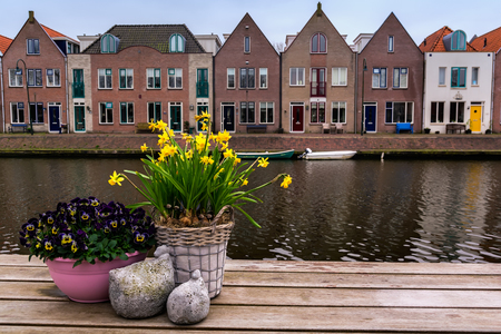 Row of traditional dutch houses on the waterfront of the canal with spring flowers on the the wooden flowers on foreground. Edam is a small village in the district Nordholland, Netherlands.