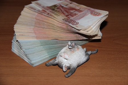animal tutu: A lot of money and a lot of money does not happen. Wealth and income