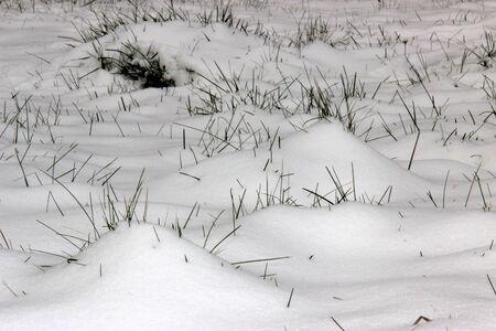 drifts: Snow drifts. Winter. Snow. Landscape Stock Photo