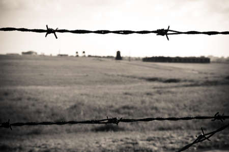 barbed wire fence in concentration camp in Majdanek in Poland photo