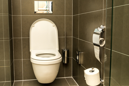 Luxury bathroom features basin and toilet bowl
