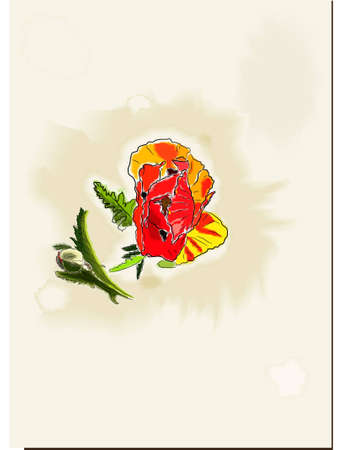 vintage watercolor card with poppy. vector illustration eps10 Vector