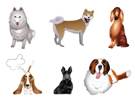 hound: set breeds of dog vector illustrations eps 10