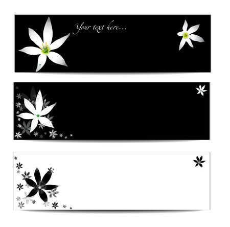 set of white and black floral headers Vector