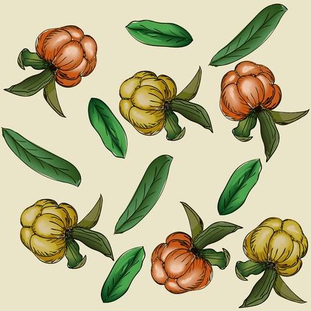 chicouté: Seamless texture avec des baies et des feuilles d'illustration Illustration
