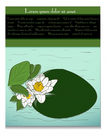 Card with water lily Vector