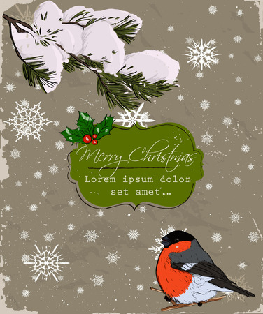 Christmas card with bullfinch photo