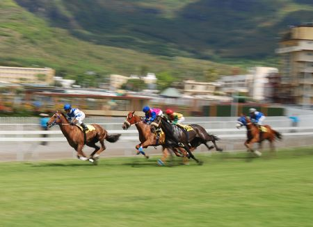 Horse racing Banque d'images