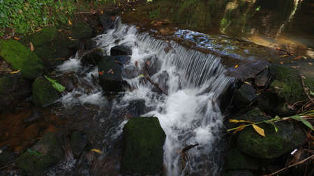 Small waterfall inside Botanical garden of Curepipe, Mauritius