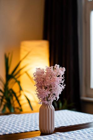 Pink  hyacinth blossom in a small pink vase Reklamní fotografie