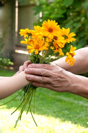 Young hand giving a flowers to senior
