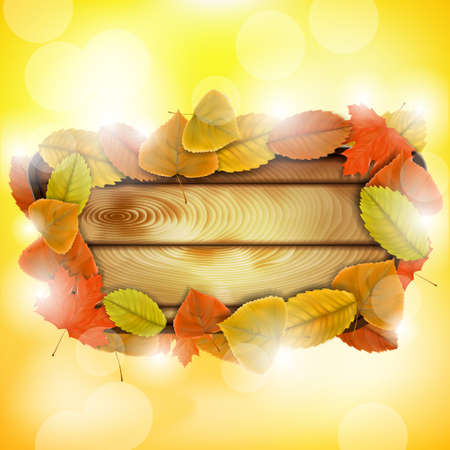Wooden board with autumn colorful leaves eps10 vector illustration Stock Vector - 21526395