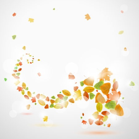 Autumn abstract background with leaves  Stock Vector - 21526399