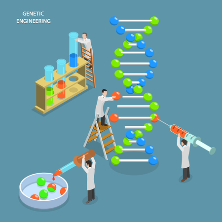 biology: Genetic engineering isometric flat vector concept. Scientists in laboratory are changing DNA structure. Medical, biological, molecular research.
