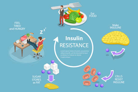3D Isometric Flat Vector Conceptual Illustration of Insulin Resistance Syndrome, Poor Liver Response to Insulin