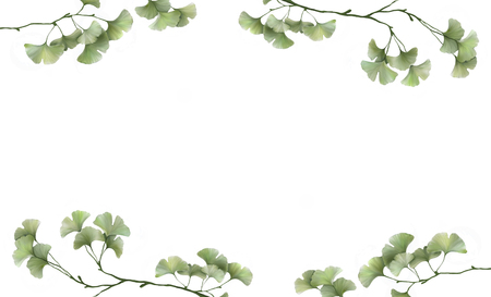 beautiful white banner with painted ginkgo leaves