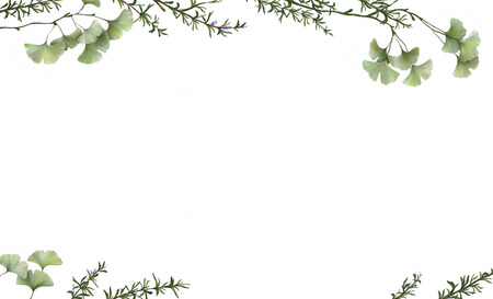 beautiful white banner with painted ginkgo leaves and rosemary
