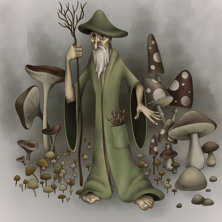 Mushroomer with different mushrooms. Mushrooms illustration.Mushrooms for cook food and poisonous mushrooms. Natural trance