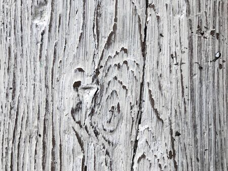Embossed texture of an old painted wooden board. White board with cracks and scratches. Aged oak surface with a beautiful natural texture. Vertical fibers of a tree. Vintage background in provence style