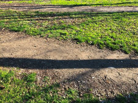 Spring sharpened texture. Horizontal stripes of shadows on the ground. Early spring grass and dirt. Abstract composition with green 免版税图像