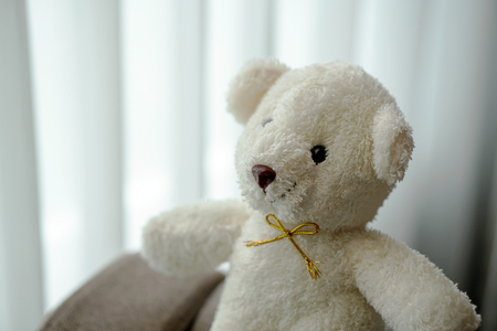white teddy bear doll toy sit on a sofa couch