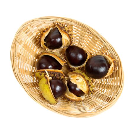 Basket with chestnuts on white background  Stock Photo