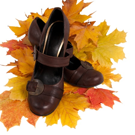 women's shoes on colorful autumn leaves  isolated on white Stock Photo - 10849303