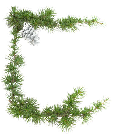 Green frame of a pine branch isolated on white background with copyspace for your text