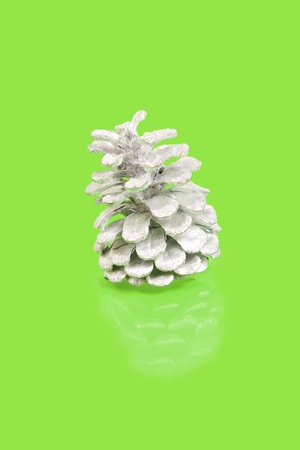 silver pine cone on green background