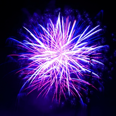 Colorful fireworks on the black sky background Stock Photo - 16325574