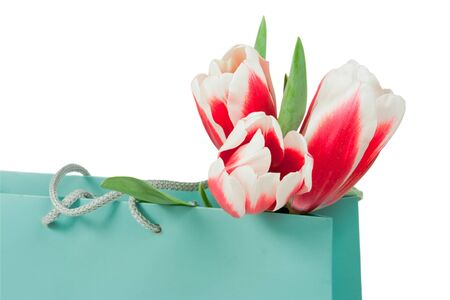 pink and white tulips in the paper bag isolated on a white background Stock Photo
