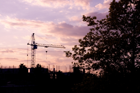 Crane and trees silhouette at sunset background Stock Photo