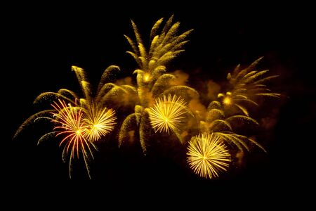 fireworks background: Colorful fireworks on the black sky background