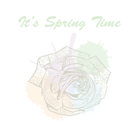 Its spring time hand drawn lettering typography with rose flower and watercolor pastel blots. Vector illustration of concept for invitation, card, ticket, label, banner.