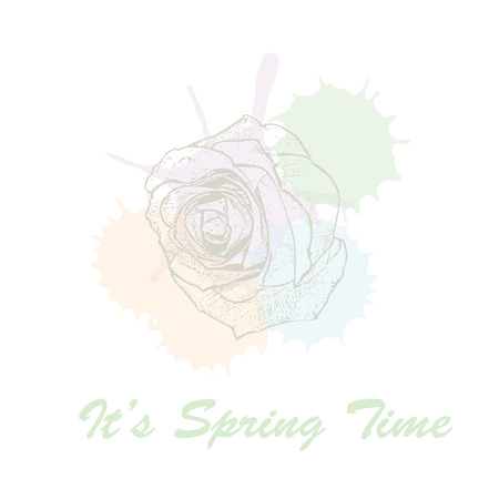 Its spring time hand drawn lettering typography with rose flowers and watercolors pastel blots. Vector illustration of concept for invitation, card, ticket, label, banner