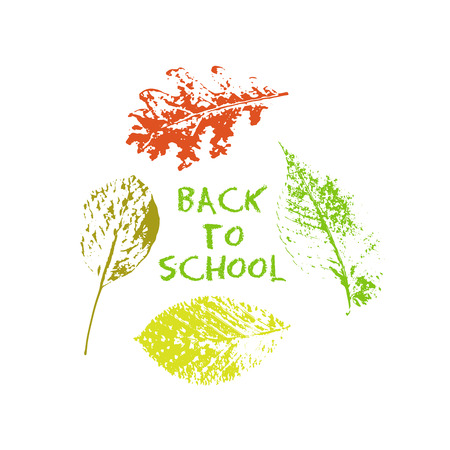 Back to school green chalk lettering typography with oak, marple, linden tree leaves colorful stamp texture. Vector illustration for cards, banners, print. Illustration